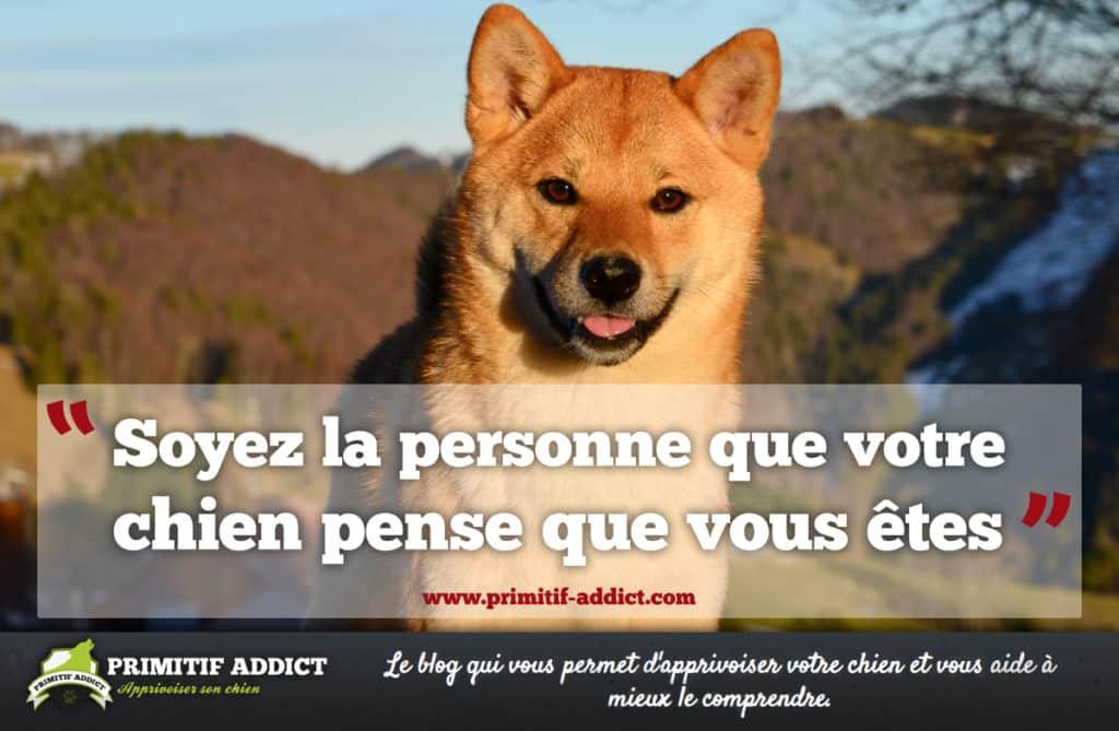 Connu citation] Soyez la personne que votre chien pense que vous êtes SN45