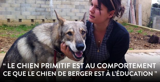 Apprendre à lire les signaux de son chien • Primitif