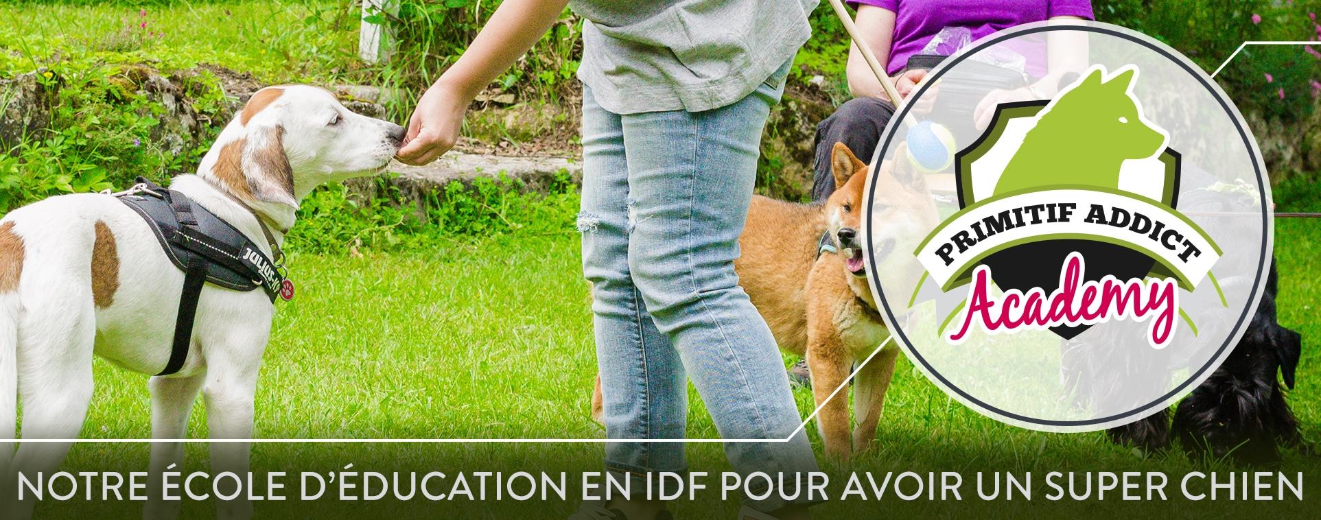 École d'éducation canine et comportement canin à Paris et IDF